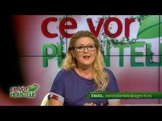 ce vor plantele cristina ghibu 2019 08 14 partea1 3912 - YouTube Science And Technology, Youtube, Youtube Movies