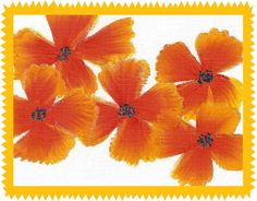 Orange and Yellow Floral Blank Notecard by ItsyBitsyGreetings