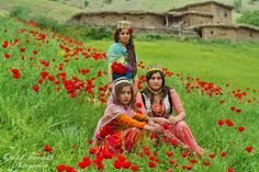 Kurdish Village Girls from Iran in beautiful colorful traditional Dresses and Headgears. Photographer: Omid Farrokh