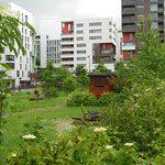http://www.in-foliopaysagistes.fr/les-projets/parcs-et-jardins/paris-grands-moulins/