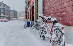 Shall I bike? by Aziz Nasuti on 500px
