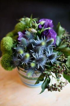 """flowers a-z: """"e"""" is for echeveria, eryngium and eustoma   Design*Sponge"""