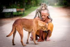 Mercifulness in Buddhist way. by wichan sumalee - Photo 107968709 - 500px