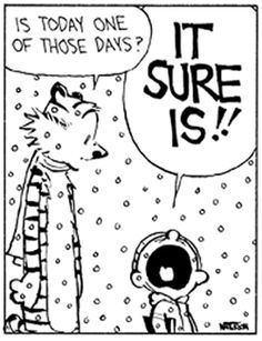 Today is one of those days El Humor, One Of Those Days, Calvin Y Hobbes, Calvin And Hobbes Quotes, Hobbs, Wisconsin Weather, Bad Day Humor, Lassi, Fixed Mindset