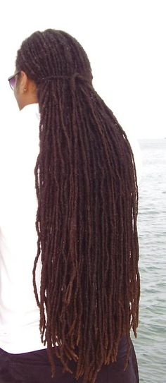Sir, may I twist your locs? If they are this beautiful, there's no telling how handsome the man is in his face...