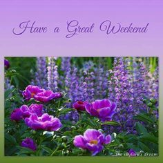 Have a great weekend Good Afternoon, Good Morning Good Night, Morning Wish, Good Morning Quotes, Weekend Greetings, Morning Greetings Quotes, Happy Weekend Quotes, Happy Sunday, Happy Weekend Images