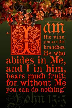 """""""I am the vine, you are the branches. He who abides in Me, and I in him, bears much fruit; for without Me you can do nothing."""" Joh 15:5 <3"""
