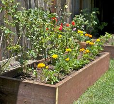 Gardening Planters and Techniques