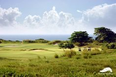 Hole #10 Huracan Are you ready to face down the Hurricane? This par 5, with its partially hidden green, offers the ultimate in risk and reward.  For reservations or to ask about our private golf club membership possibilities, please call 787.609.5888.