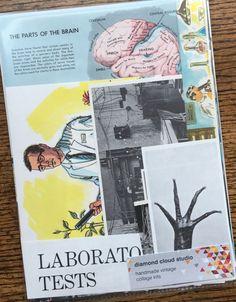 Mad Scientist in the Laboratory Vintage by diamondcloudstudio