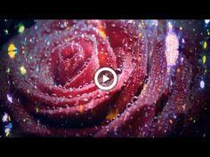 ПУСТЬ ЭТОТ ВЕЧЕР СКАЗКУ ПОДАРИТ! музыкальная открытка друзьям - YouTube