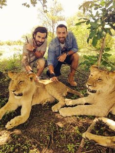 Safari Adventures Mauritius brings to you the first Lion Encounter on the island. This exclusive activity is available all year at the Casela Nature & Leisure Park, Mauritius. Mauritius Island, Safari Adventure, Cheetahs, Travel Agency, Amazing Destinations, Cool Places To Visit, Lions, The Good Place, Tv Shows