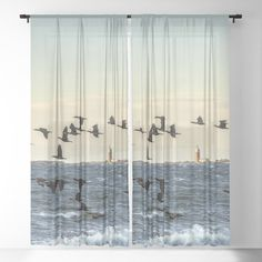 Flying flock of cormorants Sheer Curtain by Tapuphoto. Fantastic capture with beautiful colors! Sheer Curtains, Flocking, Buy Art, Nature Photography, Birds, Colors, Beautiful, Home Decor, Decoration Home
