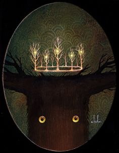 andy kehoe 4