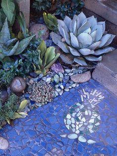 blue succulents and blue path