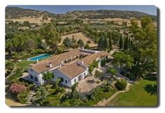 Patio Grande, Mansions, House Styles, Home Decor, Swiming Pool, Large Bedroom, Beautiful Gardens, Palm Trees, Shrubs