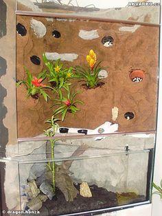 AKVARKO.cz - Paludarium Gecko Terrarium, Aquascaping, Houseplants, Lawn, Room Ideas, Gardens, Projects, Business, Terrariums