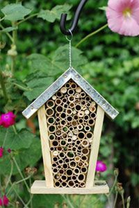 20 Best Bee Homes images in 2018 | Bee, Mason bees, Bee house