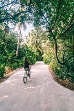 Mein Happy Place auf den Malediven – das Niyama Maldives in 44 Fotos Hotel Am Meer, Hotel In Den Bergen, Maldives, Sidewalk, Country Roads, Lily, Places, Portugal, Pictures