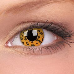 wild contacts | – Contact Lens Blog » Blog Archive » Wild Eyes Contact Lenses ...