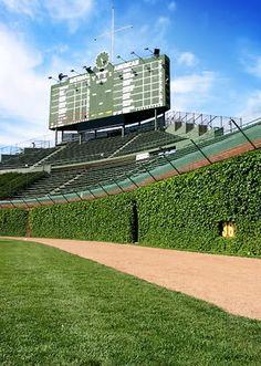 Wrigley Field, Chicago Cubs ballpark - Ballparks of Baseball Baseball Park, Chicago Cubs Baseball, Baseball Field, Football, Baseball Tickets, Tigers Baseball, Wrigley Field Chicago, Wisconsin, Michigan