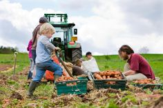 10 Most Profitable Farming Business Ideas In 2016 For Startup Entrepreneurs…