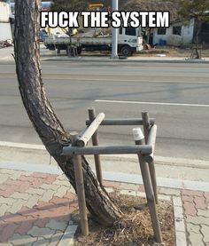 "I will NOT abide by these ""so-called"" laws of nature! Anarchtree! Anarchtree!"