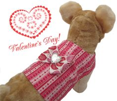 Wags & Kisses  Valentines Dog Vest by bowwowWOWBoutique on Etsy, $22.00