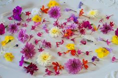 Flower Micro Premium Flowers Blend™