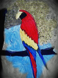 red coloured parrot