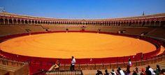 Aquí es la plaza de toros de la Maestranza. La plaza es donde hay corridas de toros. España es muy famoso por las corridas. Ana no le gustaba la idea de matar un toro como deporte. Le gustaban los animales. No comía carne.