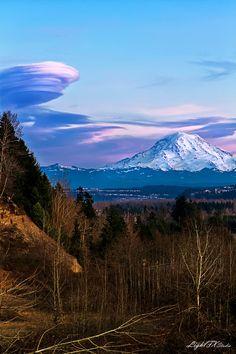 The Gentle Giant - Mt Rainier - Pierce County - Washington - USA