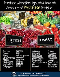 """Organic Produce can be expensive, and though it is always best to buy organic, as hard as you may try... sometimes it just isn't in your budget.   So here's a list of the most commonly bought produce with the highest and lowest amounts of pesticide residues found in the fruit or vegetable.   It would be in your best interest to ALWAYS buy organic produce that are in the """"Highest"""" category.   And don't forget to support local (hopefully organic) farmers as much as possible!"""