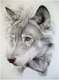 Image result for cool drawings of animals