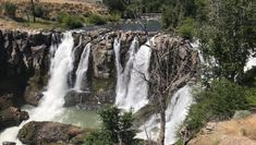 Witness Nature's Power And Man's Ability To Harness It At The Impressive White River Falls State Park In Oregon Wonderful Places, Great Places, Places To See, Oregon Washington, Oregon Travel, Local Attractions, Ocean Beach, State Parks, Trip Advisor