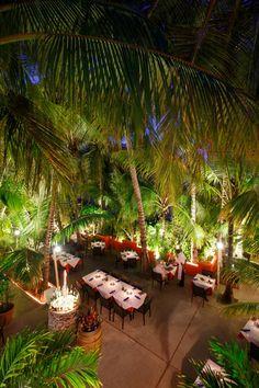 Coco Bistro   Fine Dining in the Turks & Caicos Islands