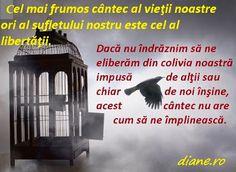 diane.ro: Cântecul de libertate al păsării   Poveste de Rumi... Movie Posters, Movies, Astrology, Films, Film Poster, Popcorn Posters, Cinema, Film, Film Posters