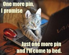 One more pin, I promis Just one more pin and I'll come to bed.;--...or get a mocha frappe & just give in to the nocturnal 'moon child' I've always been?!!!->:K.A.H.<:)
