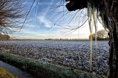 Cold landscape, Oosterhout, the Netherlands Professional Photographer, Netherlands, Cold, Mountains, Landscape, Beach, Water, Photography, Travel