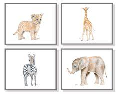 Safari Nursery Art Animal Paintings Baby Animal Prints Animal Watercolor Childrens Wall Decor Kids Room Elephant Giraffe Zebra Lion Set of 4 by jamesriverstudios on Etsy https://www.etsy.com/listing/219029353/safari-nursery-art-animal-paintings-baby