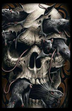 Dit is een foto van kwaadaardige ratten. In het boek proberen deze ratten de schedel van Baldur terug te krijgen. Ze zullen hiervoor alles doen wat ze kunnen. Ze kunnen zelfs moorden. De ratten komen uit de onderwereld en zijt kwaadaardig. Met hun kraaloogjes en glibberige huid hebben ze Finn twee keer aangevallen en willen hem dood. Uiteindelijk is Finn sterker en weet hen te misleiden.