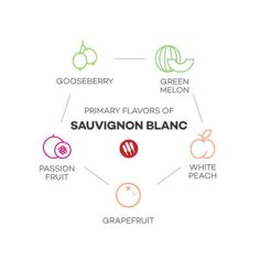 Enthusiasts Guide to Sauvignon Blanc by Wine Folly