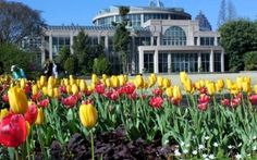 The mission of the Atlanta Botanical Garden is to develop and maintain plant collections for display, education, research, conservation and enjoyment.
