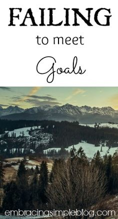 Have you ever dealt with failing to meet goals? I'm sharing my goals I've failed to accomplish and what I learned from it!