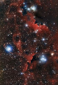 "This image shows the intricate structure of part of the Seagull Nebula, known more formally as IC 2177. These wisps of gas and dust are known as Sharpless 2-296 (officially Sh 2-296) and form part of the ""wings"" of the celestial bird. This region of the sky is a fascinating muddle of intriguing astronomical objects — a mix of dark and glowing red clouds, weaving amongst bright stars. This new view was captured by the 2.2-metre telescope at ESO's La Silla Observatory in Chile."