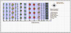 Garden Plan - 2014: Vegetable Garden - Caitlin Simpson