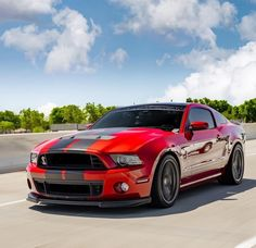 Ford Mustang Shelby Cobra, Shelby Gt500, Mustang Cars, Street Racing Cars, Fancy Cars, Hot Rides, Car Ford, American Muscle Cars, Hot Cars