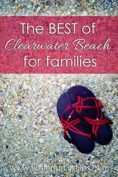 The BEST of Clearwater Beach, Florida for families - what to do, where to stay and where to eat! | tipsforfamilytrips.com | spring break | gulf coast | winter break