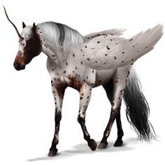 Winged unicorn Knabstrupper Black Leopard