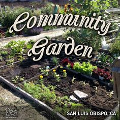 community garden ideas house Pinterest Gardens Ideas and